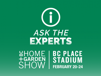 Ask the experts event at BC Place Stadium